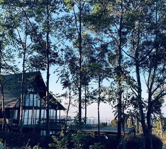villa gupondoro
